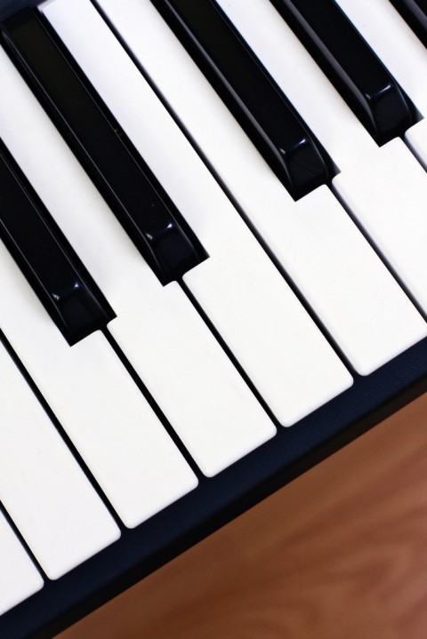 photo credit: Black and white synthesizer keys via photopin (license)