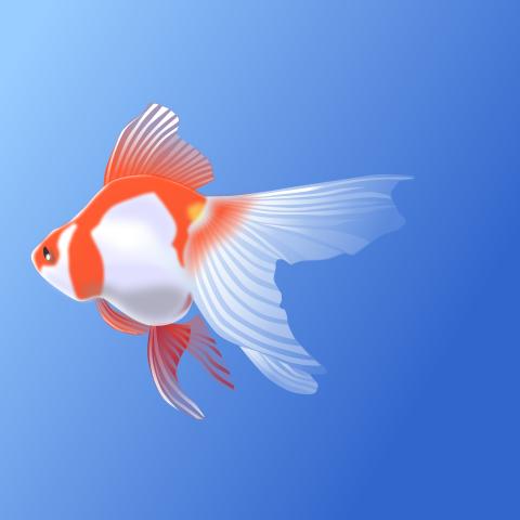 photo credit: Fish illustration #5 via photopin (license)