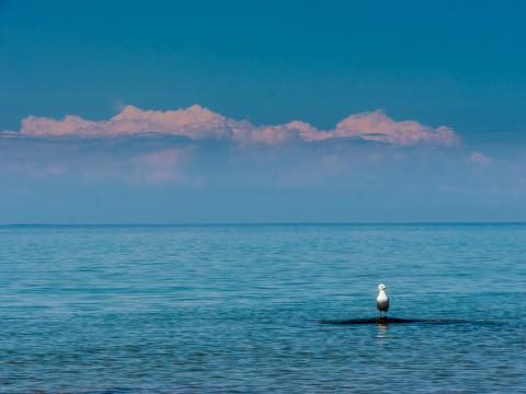 photo credit: Lake Michigan via photopin (license)