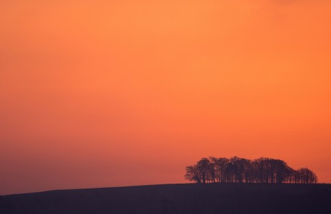 photo credit: Red Sky, Cotswolds, Gloucestershire via photopin (license)