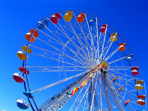 photo credit: Florida State Fair via photopin (license)