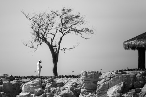 photo credit: Man and Tree via photopin (license)