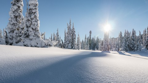 photo credit: `James Wheeler Peaceful Winter via photopin (license)