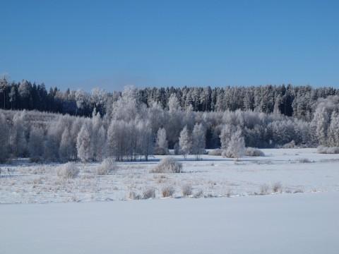 photo credit: Axiraa - back very soon Last day of White Kingdom, 5 via photopin (license)