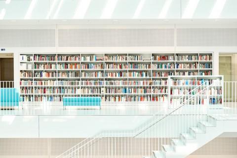 photo credit: cszar A Lifetime Of Reading via photopin (license)