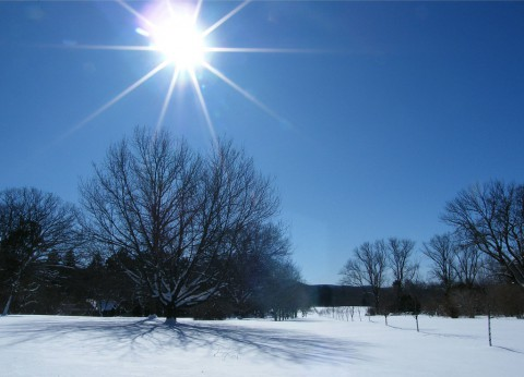 photo credit: Stanley Zimny (Thank You for 22 Million views) Winter Sun via photopin (license)