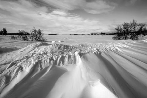 photo credit: Miguel Virkkunen Carvalho Winter Scene via photopin (license)