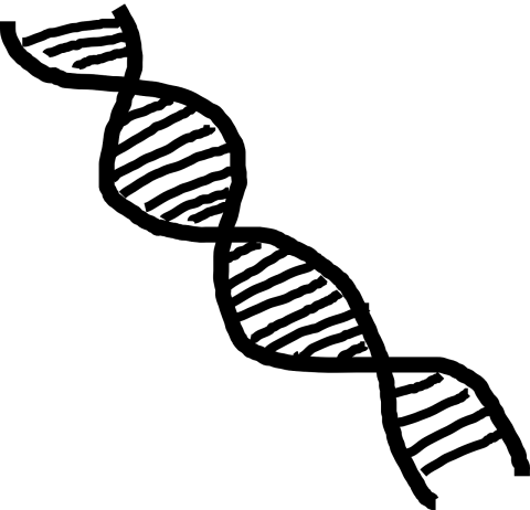 17090701