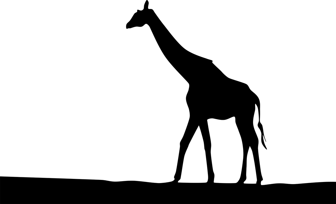18022601