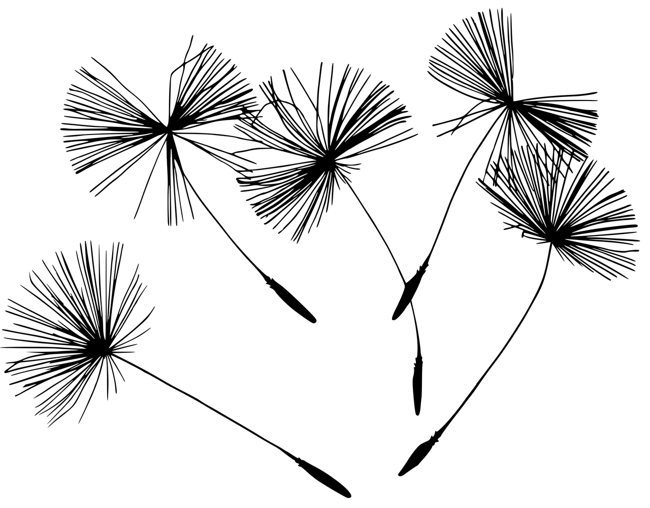18032701